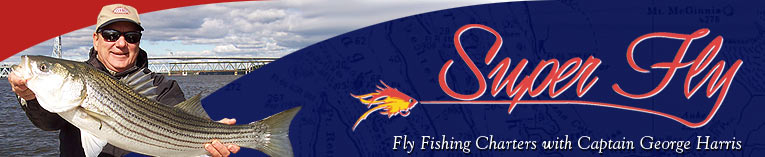 Super Fly: Fly Fishing Charters with Captain George Harris